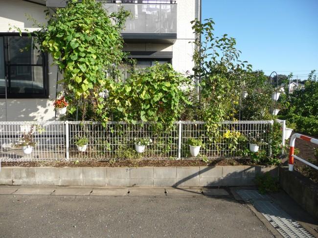 愛川町 Y様邸 駐車場工事 Before